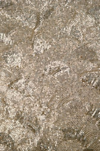 Sequin fabric champagne